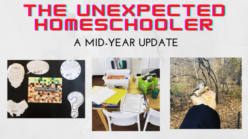 The Unexpected Homeschooler:  A Mid-Year Update